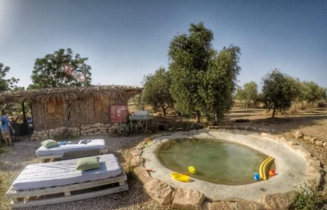 זית במדבר – כפר אינדיאני
